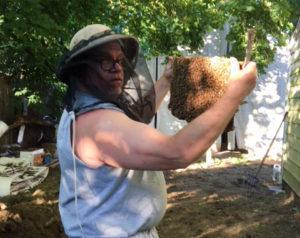 long island bee keeping